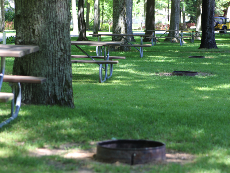 Fire rings and picnic tables are included in the sites.