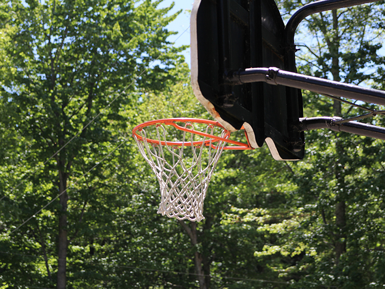 You're welcome to use our basketballs, volleyballs, and horseshoes.