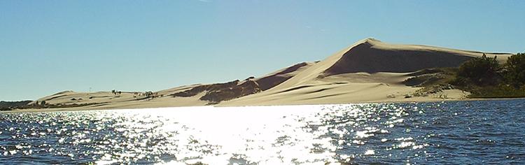silver-lake-mi-sandy-shores